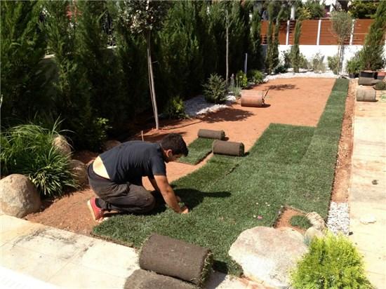 Κατασκευή-Διαμόρφωση κήπου